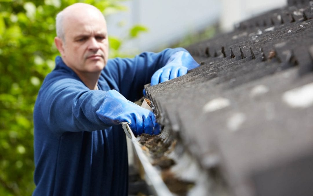 home maintenance services include gutter cleaning